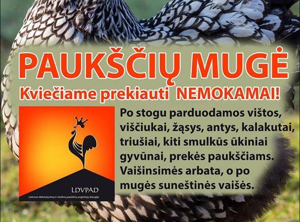Paukščių mugė Kaune